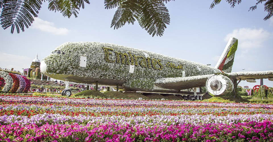 Image Description for http://80.88.88.181:8888/gpsviaggi/gpsviaggi/packages_photos/731/Dubai-Miracle-Garden-2.jpg